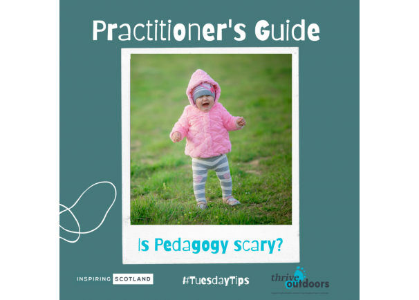 A Practitioner's Guide: Unpacking Pedagogy