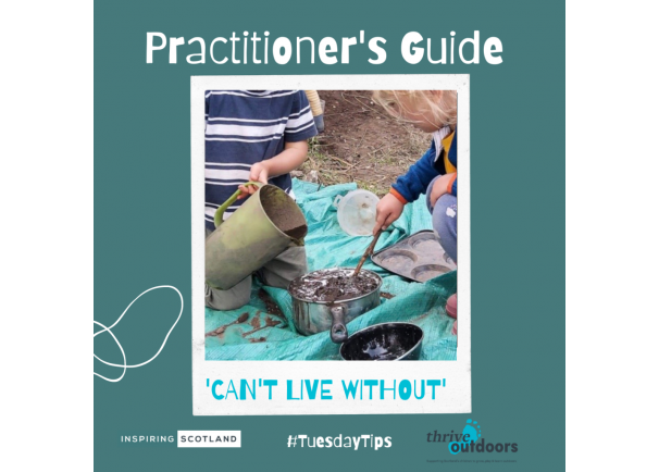 A Practitioners' Guide: 'We can't live without'