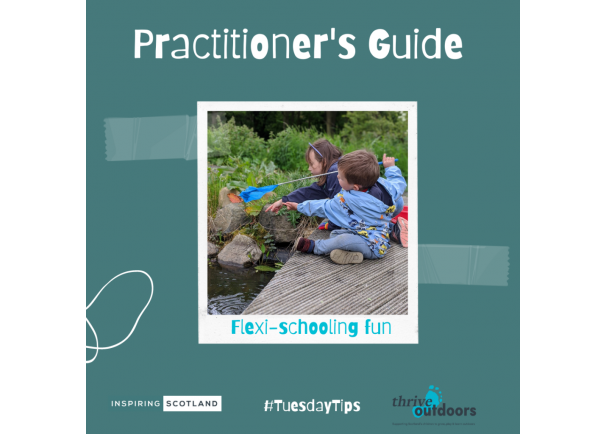 A Practitioner's Guide: Flexi-schooling Fun