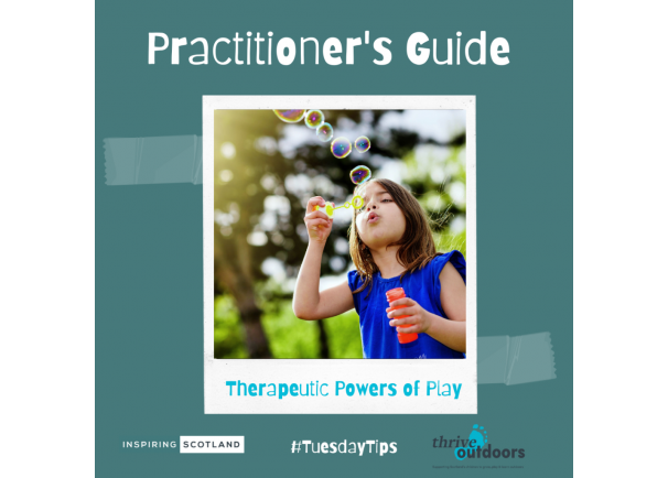 A Practitioner's Guide: Therapeutic Powers of Play
