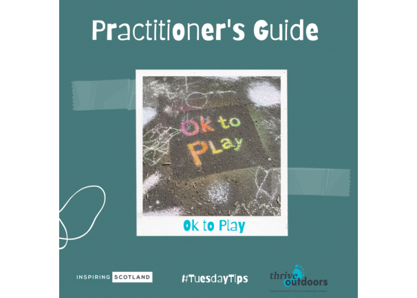 Practitioners Guide: Ok to Play