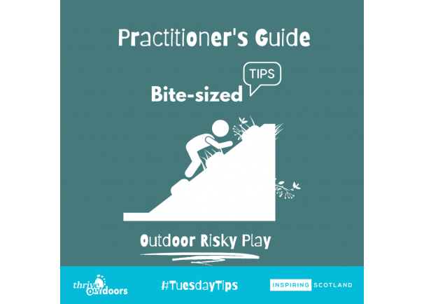 Practitioners Guide-Bite-sized tips: Risky Play