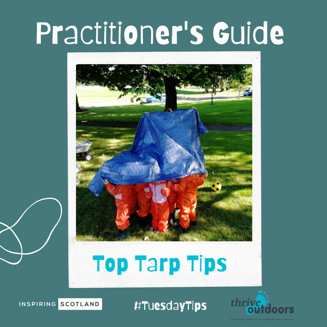 A practitioner's guide: Tarp Tips