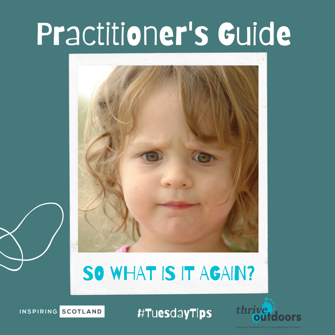 A Practitioner's Guide: Unpacking Pedagogy – Part 2
