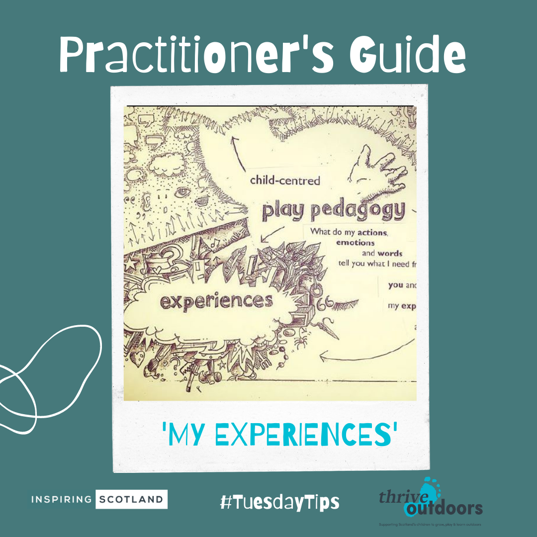 A Practitioner's Guide: Experiences